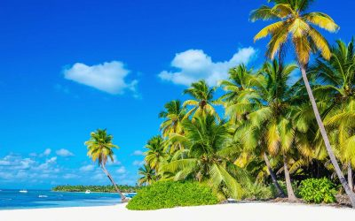 Segeltörn Karibik 2019